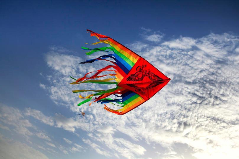 kite-flying-high-in-a-blue-sky-larisa-kroshkin