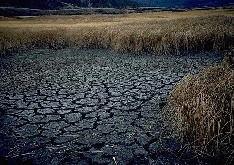 DWP_Drought