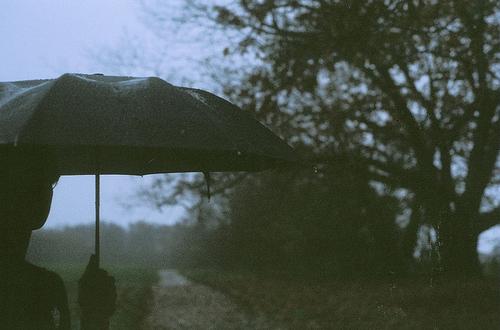 boy-girl-rain-sky-trees-umbrella-Favim.com-76747