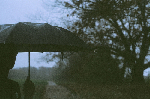 boy-girl-rain-sky-trees-umbrella-Favim.com-76747