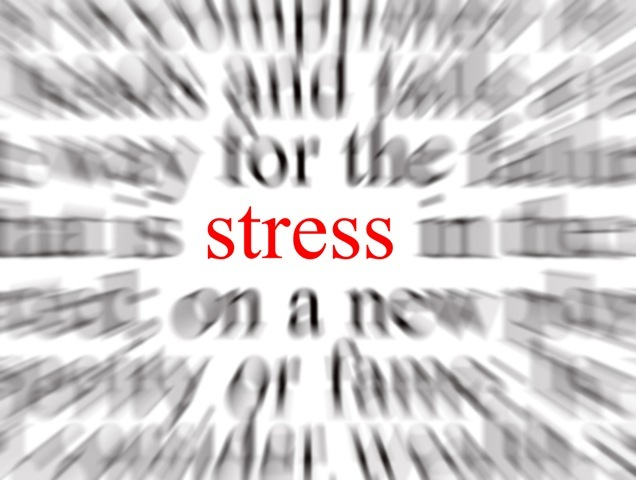 stress02