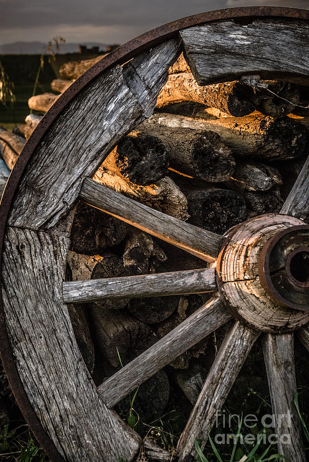broken-cart-wheel-with-missing-spoke-and-logs-on-a-farm-at-pacia-peter-noyce