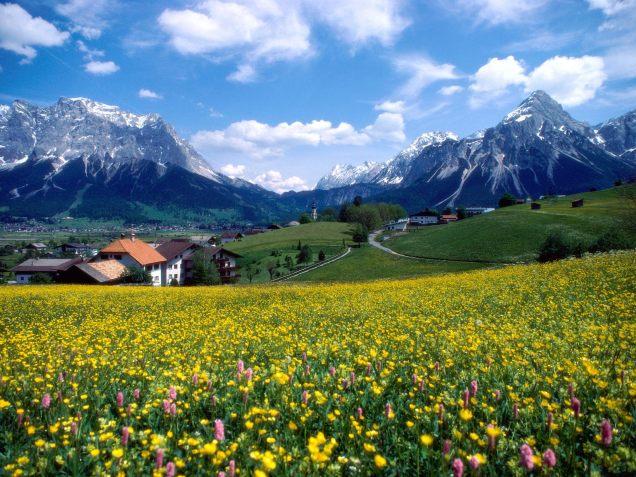 Countryside-Splendor-(France)
