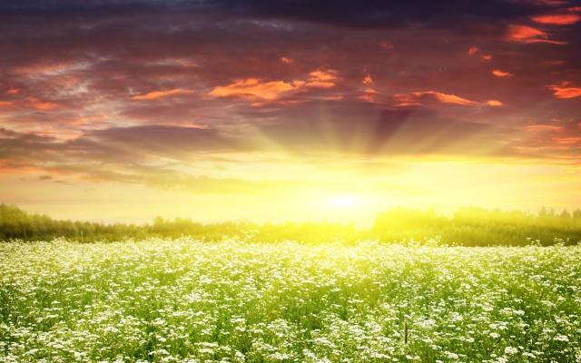 dream-spring-2012-sunrise-ii_2560x1600_96737
