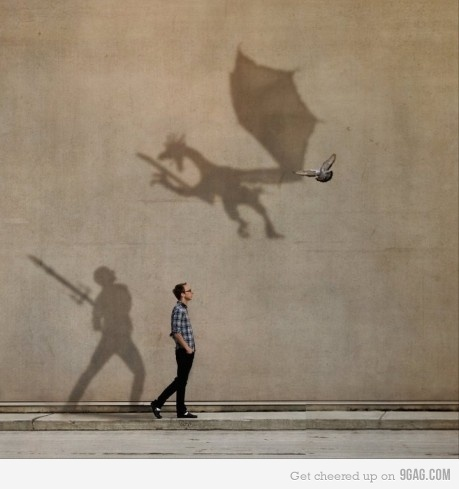 9gag-bird-composicao-dinosours-dragon-Favim.com-289189