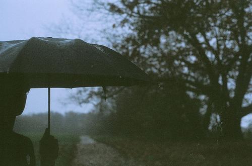 boy-girl-rain-sky-trees-umbrella-favim-com-76747