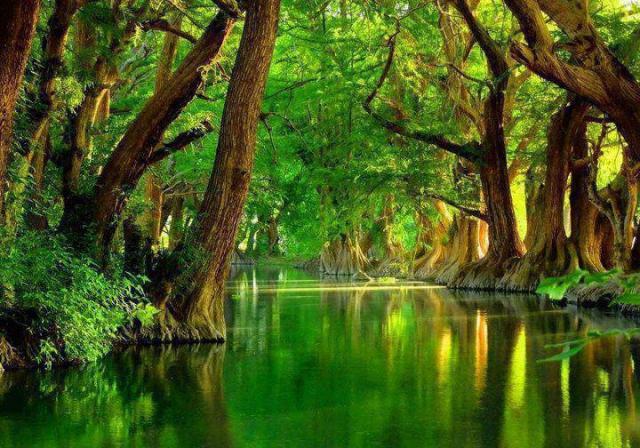 http://1.bp.blogspot.com/-hStdoquI7FY/UEIbHCvrt_I/AAAAAAAADPM/P7BKLlrTrwo/s1600/Green+River+Banks+Mexico+♥.jpg